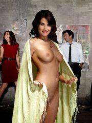 Cobie Smulders Celebrity Nude Pics