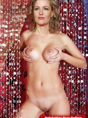 Gillian Anderson Celebrities Naked image 3