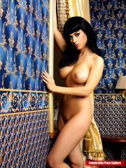 Katy Perry Celebrity Leaked Nude Photos
