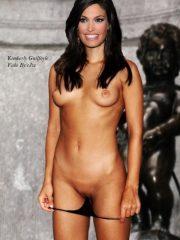 Kimberly Guilfoyle Free Nude Celebs image 3