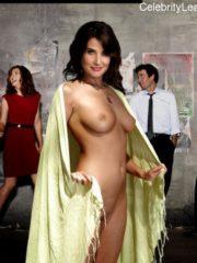 Cobie Smulders free nude celeb pics free nude celeb pics