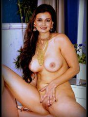 Dia Mirza Newest Celebrity Nudes image 2