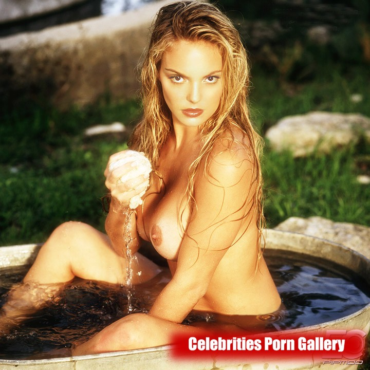 Katherine heigl nude huge boobs in a picture scene