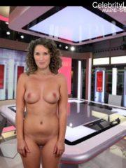 Marie Sophie Lacarrau fake nude celebs
