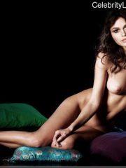 Rachel Bilson naked celebrity