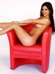 Sophia Bush Celeb Nude